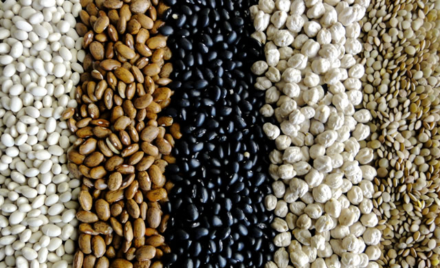 beans – the latin american 'super food' | healthy hispanic living